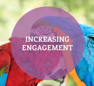 Increasing Engagement