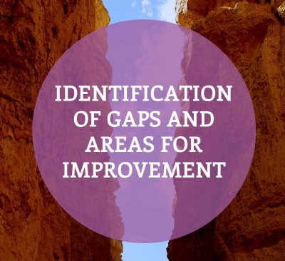 Identification of Gaps and Areas for Improvement