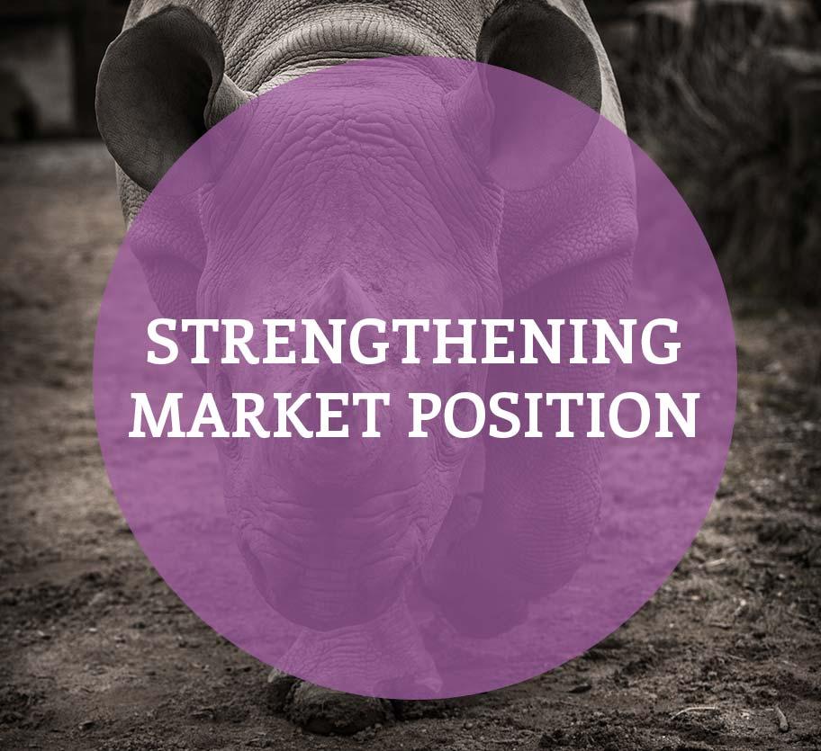Strengthening Market Position